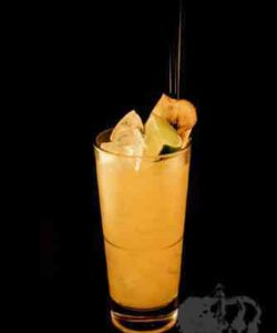 https://cocktailsandshots.com/wp-content/uploads/2018/06/apple_jack_cocktail_recipe-250x300.jpg