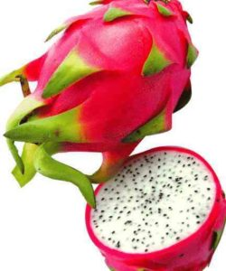 http://cocktailsandshots.com/wp-content/uploads/2018/06/cocktails_with_dragon_fruit_and_shooters_with_dragon_fruit_description-250x300.jpg