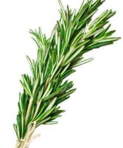http://cocktailsandshots.com/wp-content/uploads/2018/06/cocktails_with_rosemary_and_shooters_with_rosemary-250x300.jpg