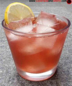 https://cocktailsandshots.com/wp-content/uploads/2018/06/cranberry_gin_cocktail_drink_recipe_made_with_cranberries_gin_and_lemon_juice-250x300.jpg