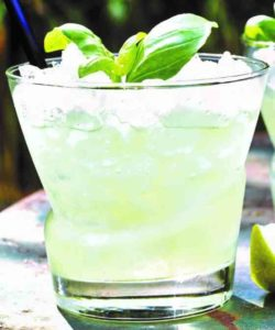 https://cocktailsandshots.com/wp-content/uploads/2018/06/fragrant_basil_gin_cocktail_drink_recipe-250x300.jpg
