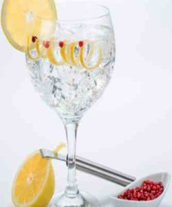 https://cocktailsandshots.com/wp-content/uploads/2018/06/gin_tonic_with_peppercorns-250x300.jpg