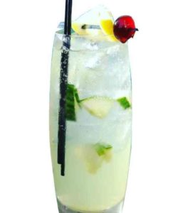 https://cocktailsandshots.com/wp-content/uploads/2018/06/how_to_prepare_the_cucumber_collins_cocktail_made_with_gin_lemon_juice_and_simple_syrup-250x300.jpg