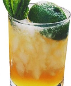 https://cocktailsandshots.com/wp-content/uploads/2018/06/how_to_prepare_the_mai_tai_cocktail_recipe_made_with_orange_curacao_orgeat_rum_lemon_juice_and_sugar_syrup_0-250x300.jpg